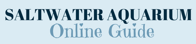Saltwater Aquarium Online Guide Logo